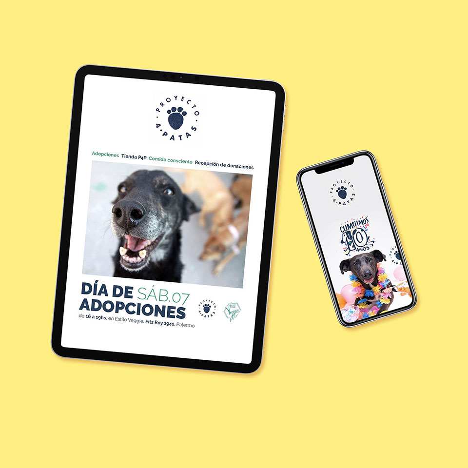 Proyecto 4 Patas - Email Marketing